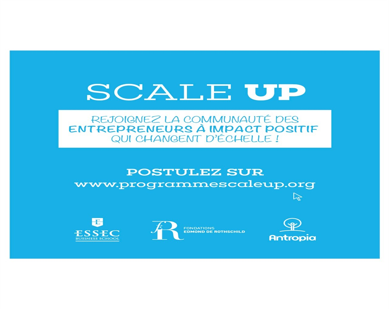 Apply to Scale Up 2016!